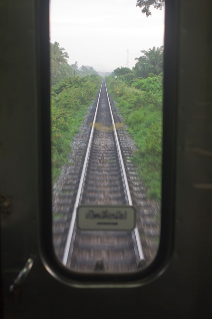 Inter jungle rail