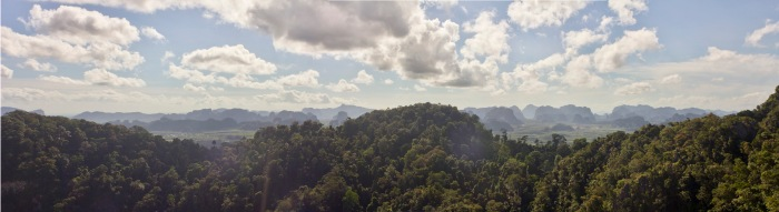 3 shot panorama over the jungle