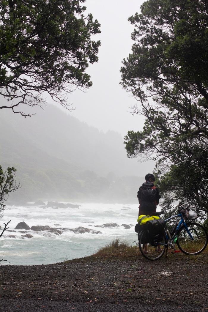Rainy stop near Whanarua