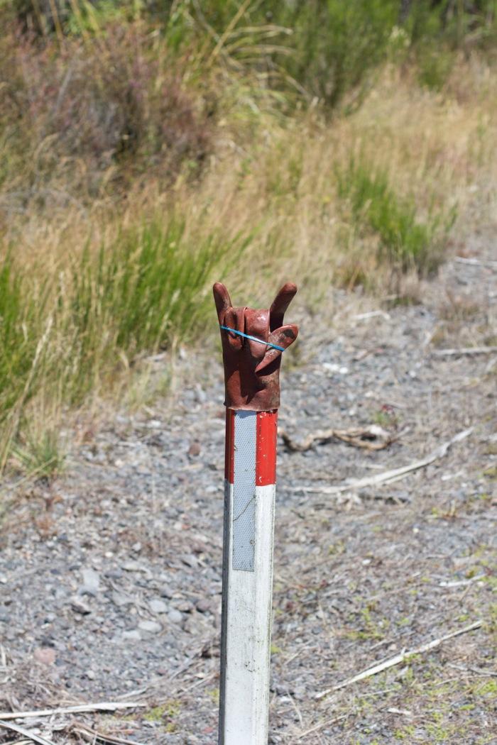 Kiwi humor