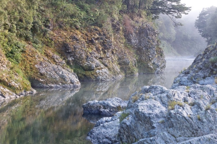 The Pelorus river
