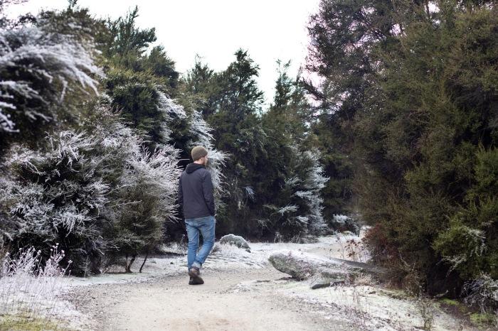 Snowy Path, Wanaka
