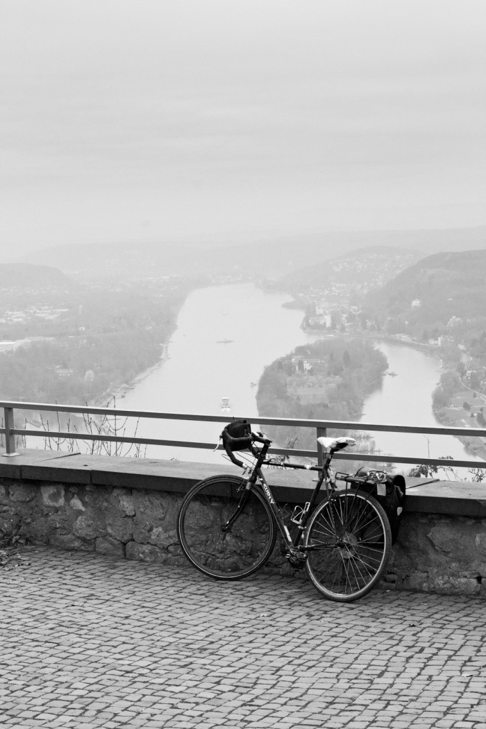 A view from the Drachenfels