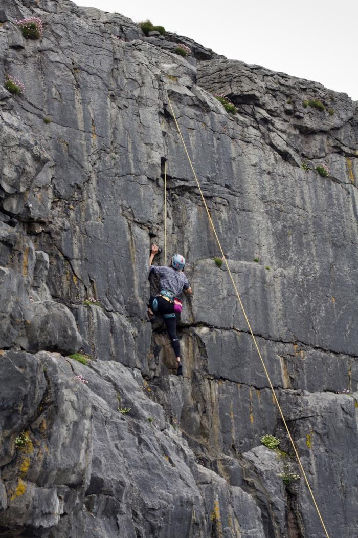 Jasmin climbing Lisdoonfarout